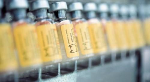 Hemorio - vacinação contra a febre amarela